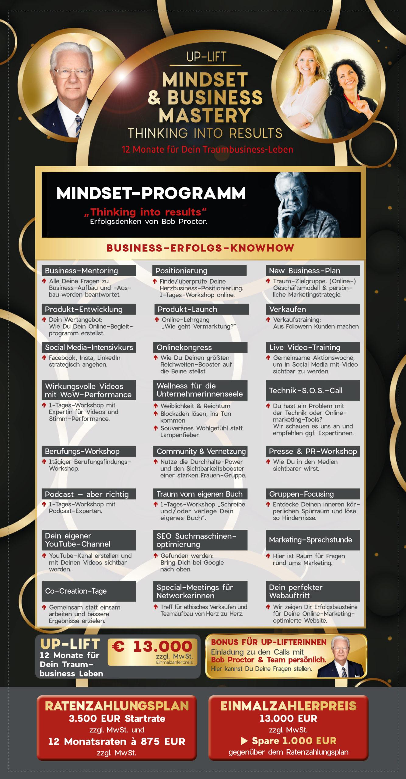 Thinking-into-Results-Business-Mindset-Inhalt